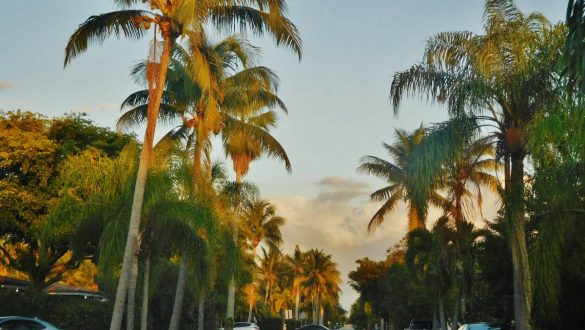 Fotodagbog fra Florida - Hollywood i Florida - Rejsdiglykkelig.dk