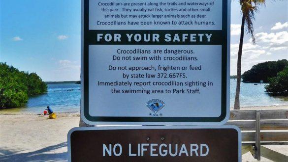 Fotodagbog fra Florida - John Pennekamp Coral Reef State Park på Key Largo i Florida Keys - Rejsdiglykkelig.dk