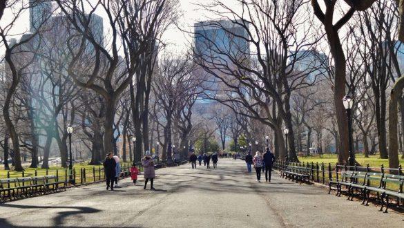 Fotodagbog fra New York - The Mall i Central Park - Rejsdiglykkelig.dk
