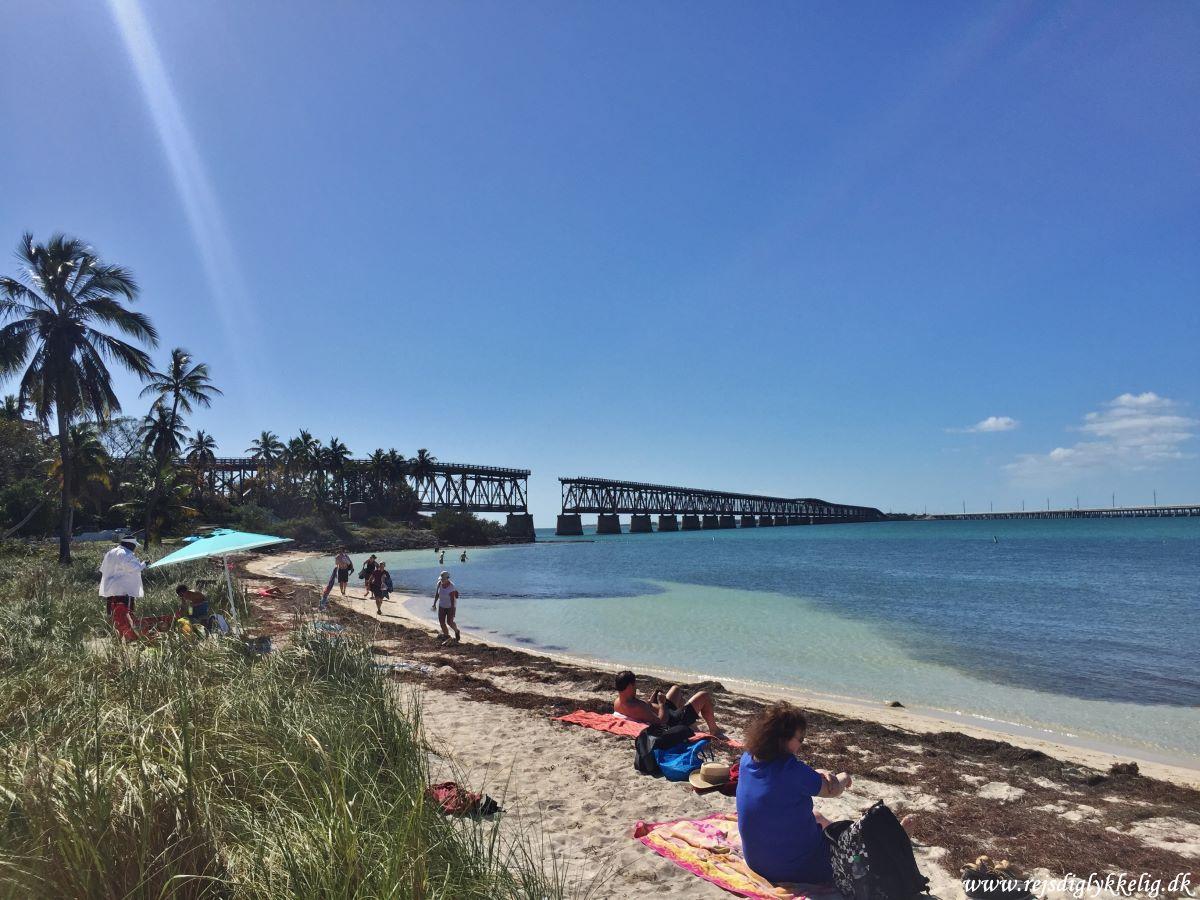Endagstur til Florida Keys og Key West - Big Pine Key - Rejsdiglykkelig.dk