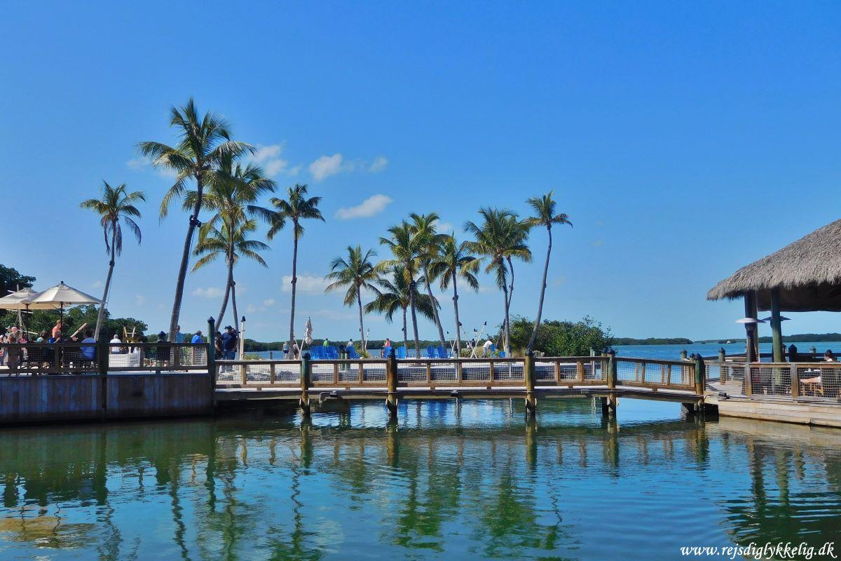 Endagstur til Florida Keys og Key West - Islamorada - Rejsdiglykkelig.dk