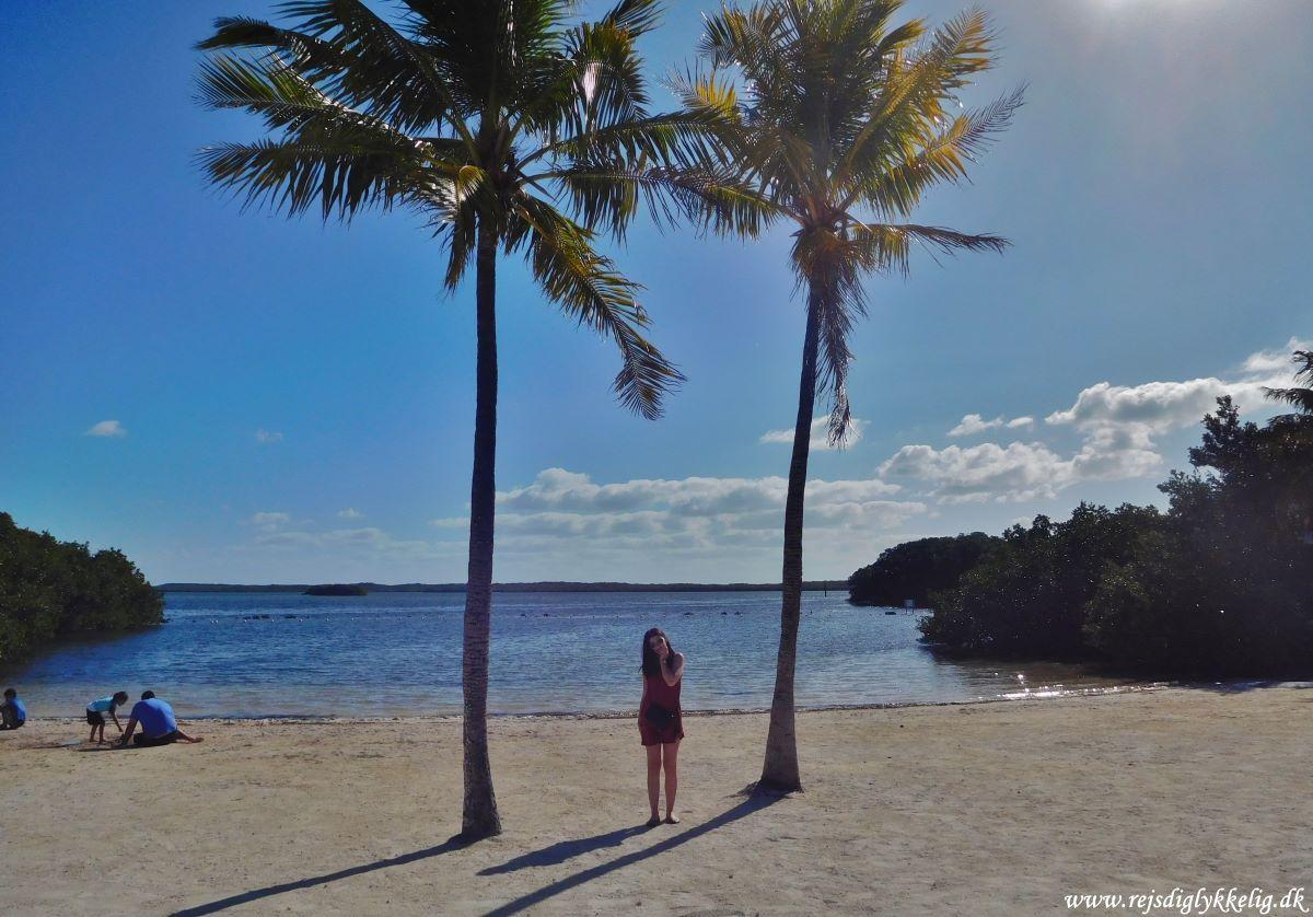 Endagstur til Florida Keys og Key West - Key Largo - Rejsdiglykkelig.dk