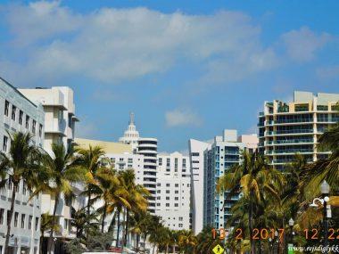 Rejseguide til Miami - Rejsdiglykkelig.dk