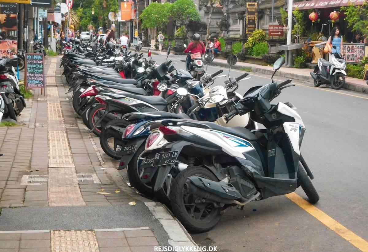 16 oplevelser i Ubud - Scooterudlejning - Rejs Dig Lykkelig