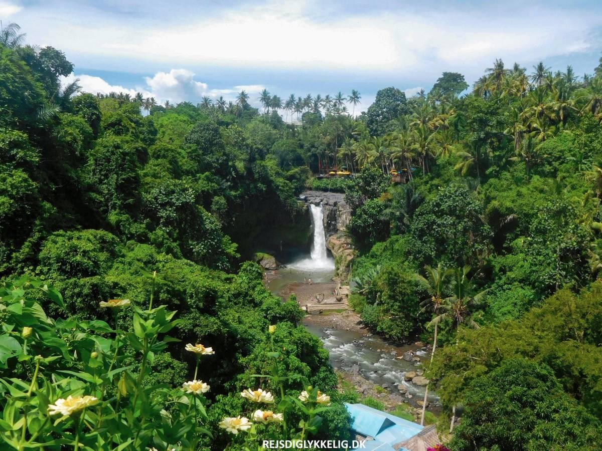 16 oplevelser i Ubud - Tegenungan Waterfall - Rejs Dig Lykkelig