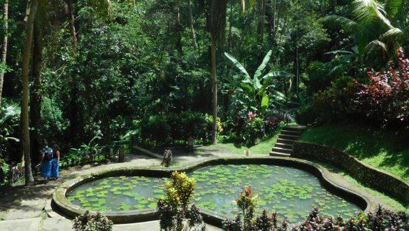 Fotodagbog fra Ubud - Dam i Goa Gajah Temple - Rejsdiglykkelig.dk