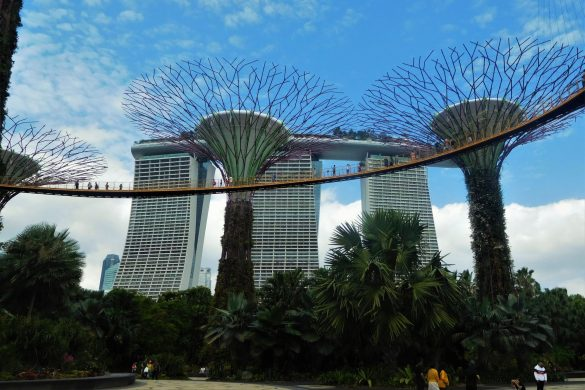 Guide til at komme fra Changi Airport til Singapore - Rejsdiglykkelig.dk