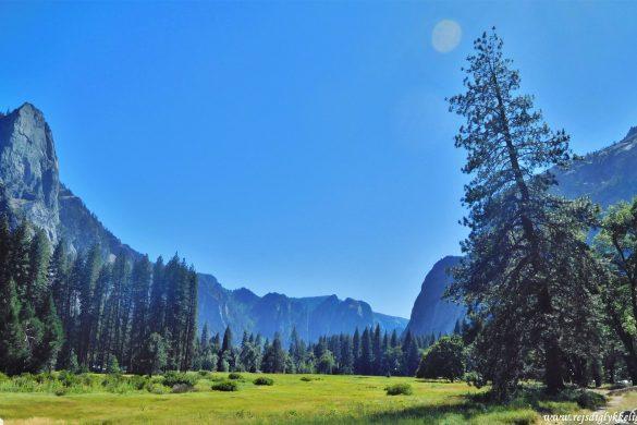 12 af de bedste national parker i USA -Yosemite National Park - Rejsdiglykkelig.dk