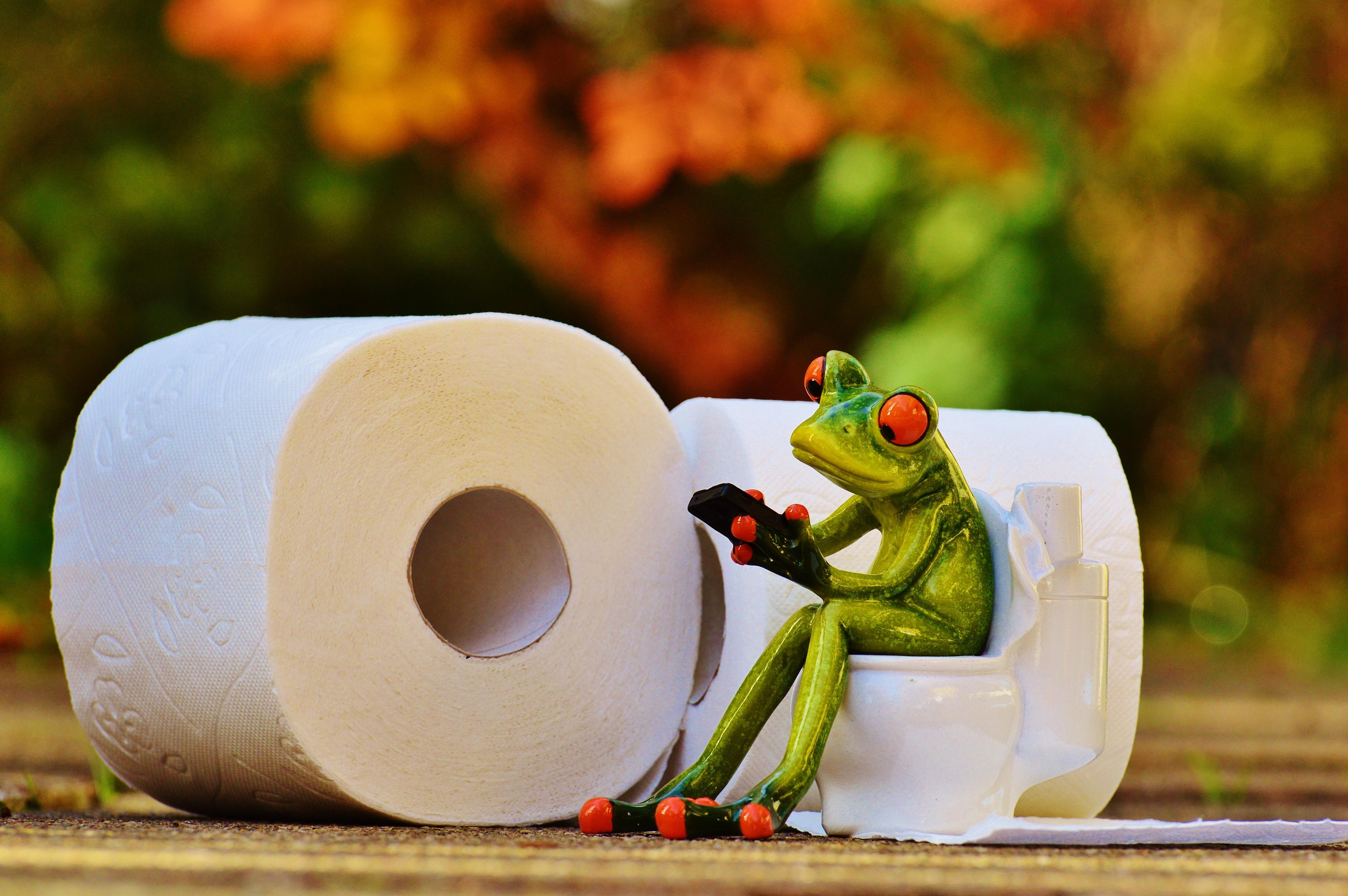 20 underlige love og regler i Singapore - offentlige toiletter - Rejsdiglykkelig.dk