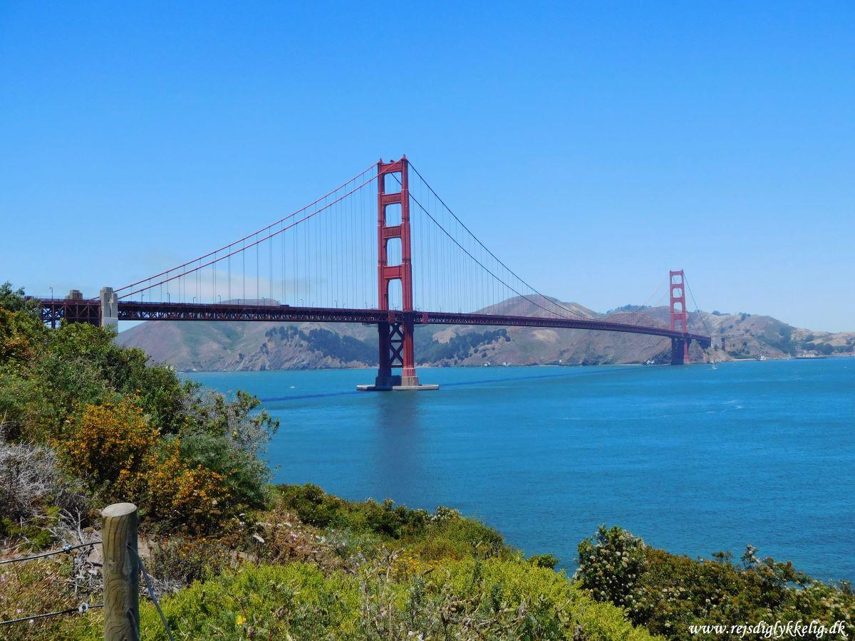 20 oplevelser på Highway 1 - San Francisco - Rejsdiglykkelig.dk