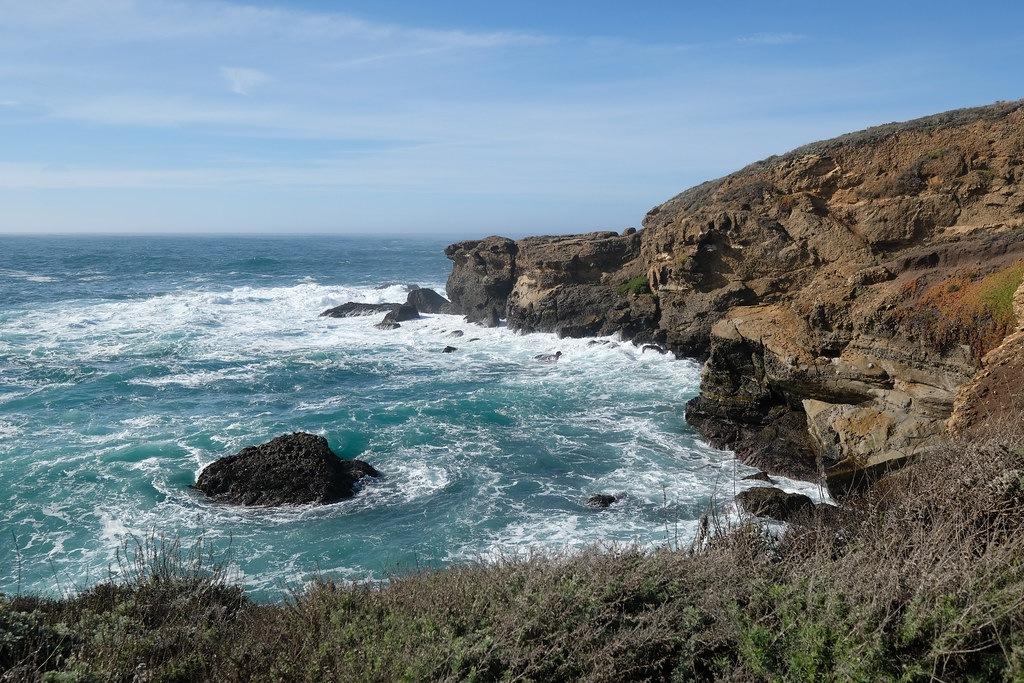 20 oplevelser på Highway 1 - Point Lobos State Natural Reserve - Rejsdiglykkelig.dk