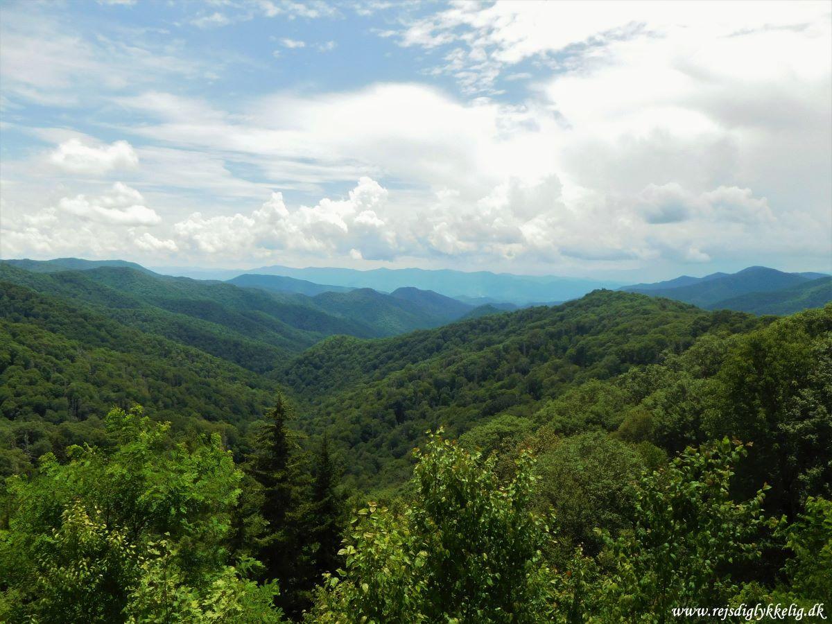 Tilbageblik på 2019 - Great Smoky Mountains i USA - Rejsdiglykkelig.dk