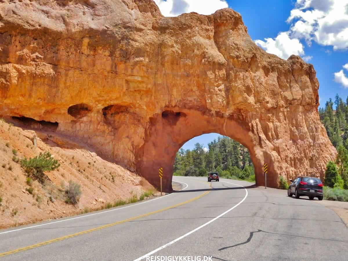 12 Smukke Nationalparker i USA - Rejs Dig Lykkelig