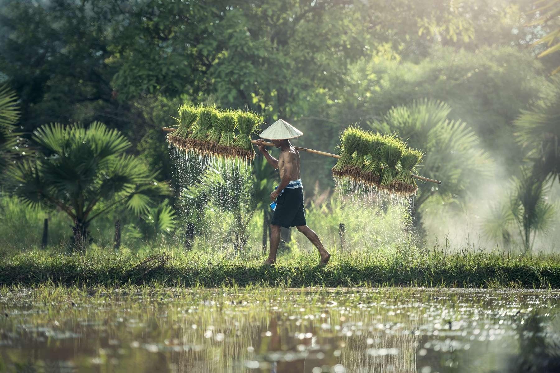Destinationer Cover - Asien - Rejs dig lykkelig