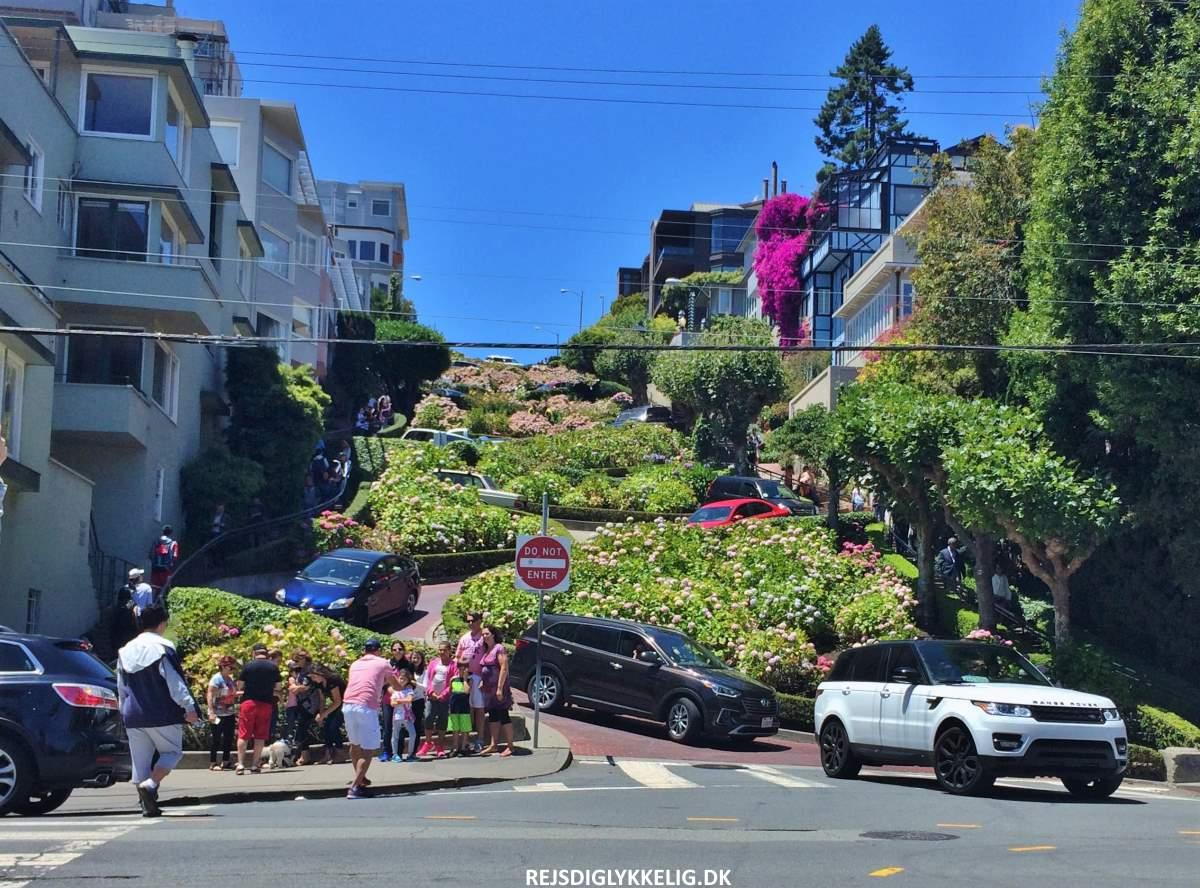 15+ Oplevelser i San Francisco - Lombard Street - Rejs Dig Lykkelig