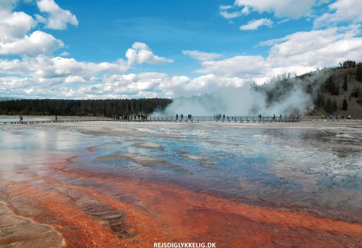 Guide til Yellowstone National Park - Indgangspris - Rejs Dig Lykkelig