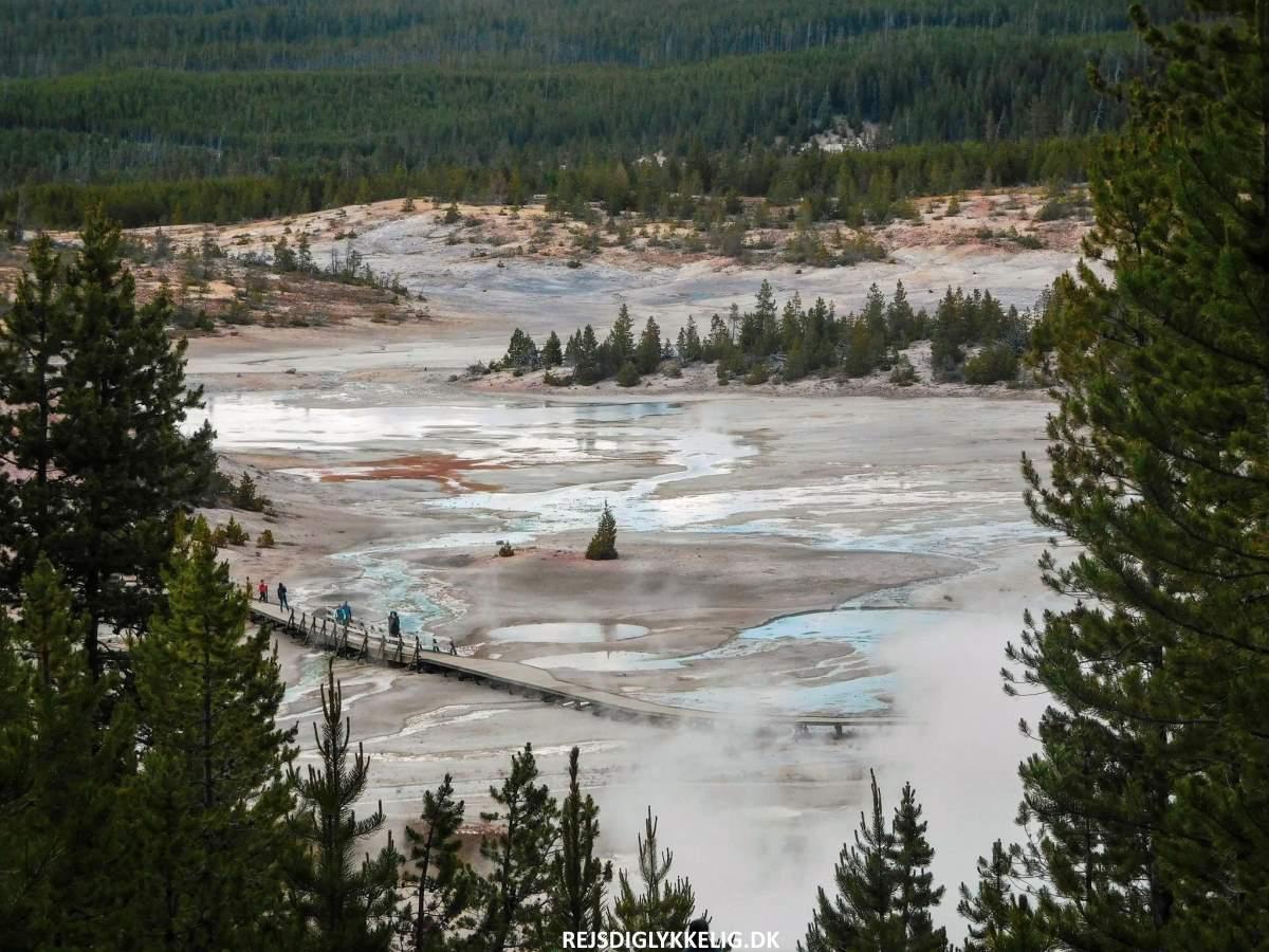 Guide til Yellowstone National Park - Norris Geyser Basin - Rejs Dig Lykkelig