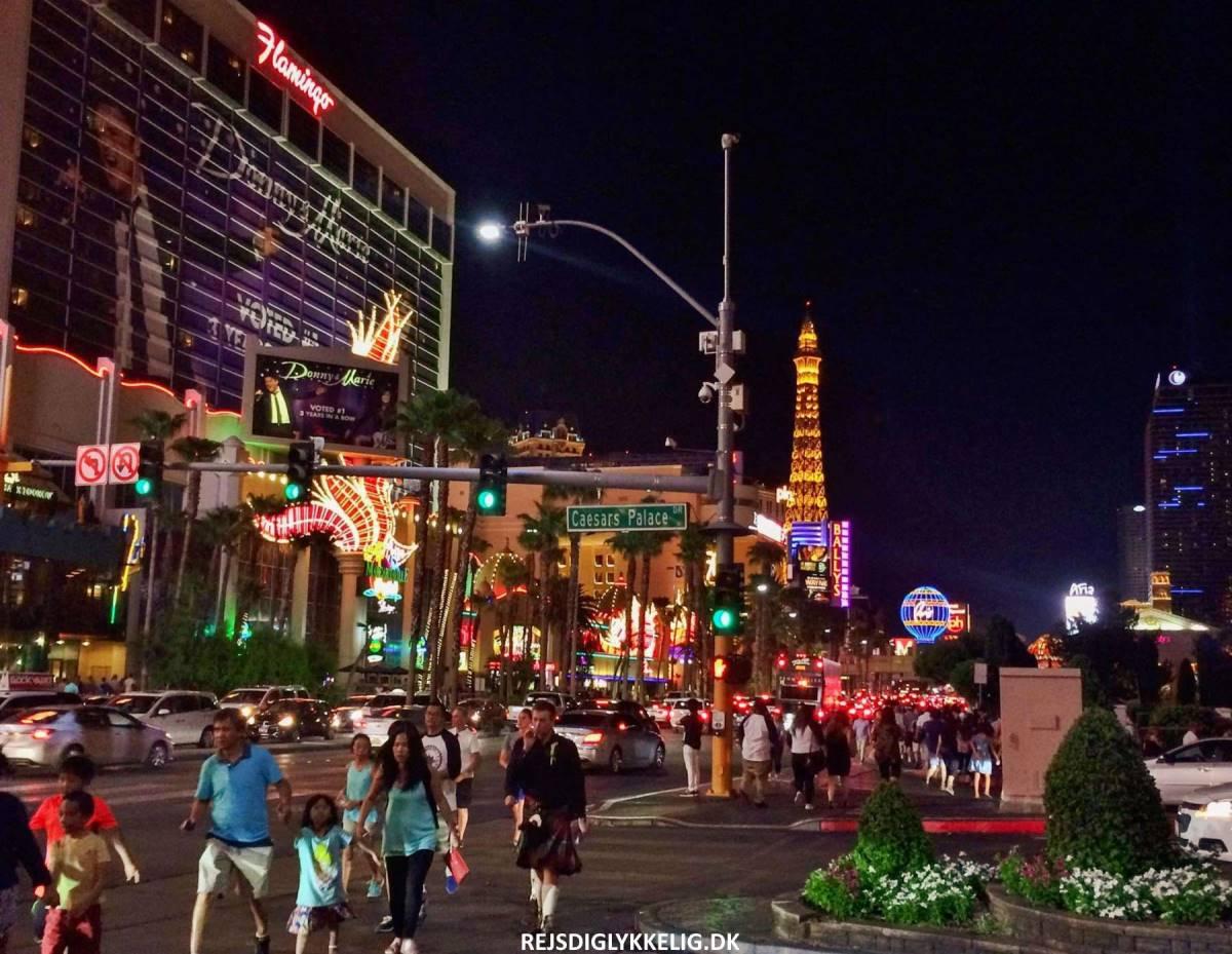 Road Trip Rute i Det Vestlige USA - Las Vegas - Rejs Dig Lykkelig