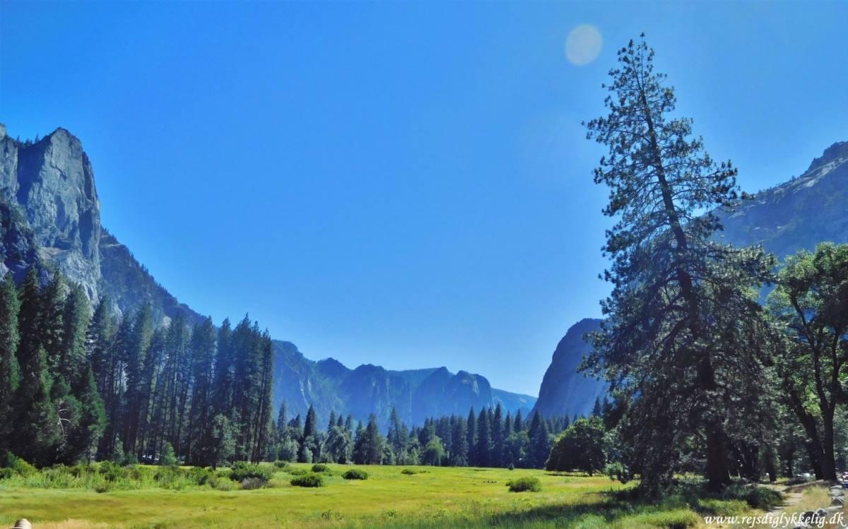 Road Trip Rute i Det Vestlige USA - Yosemite National Park - Rejs Dig Lykkelig
