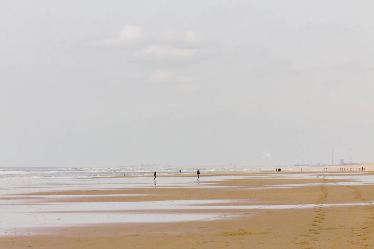 Vadehavet - Rejs Dig Lykkelig