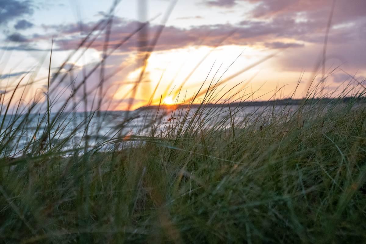 16 Must-See Seværdigheder og Oplevelser på Fyn - Helnæs - Rejs Dig Lykkelig