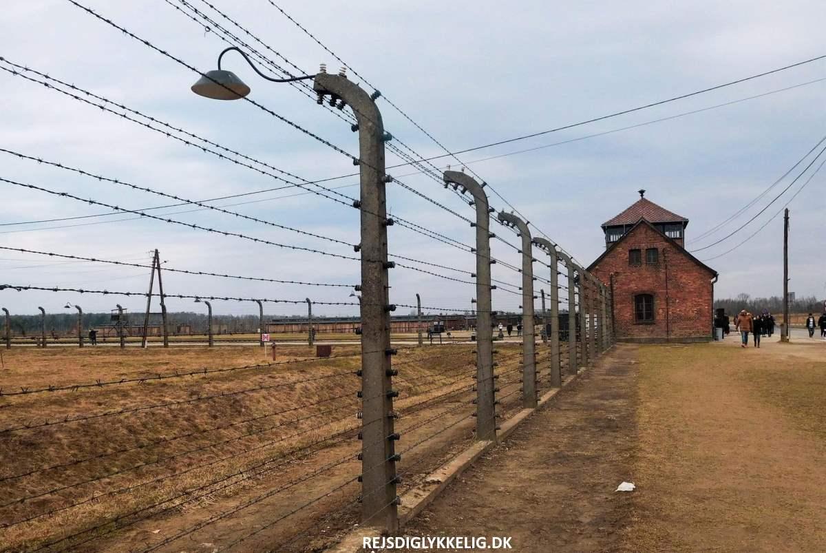 Birkenau - Rejs Dig Lykkelig