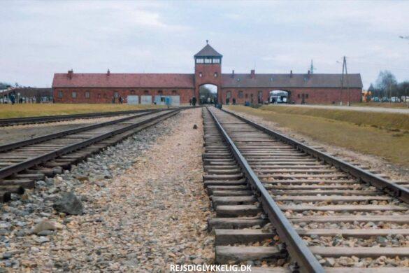 Guide til Auschwitz - Rejs Dig Lykkelig