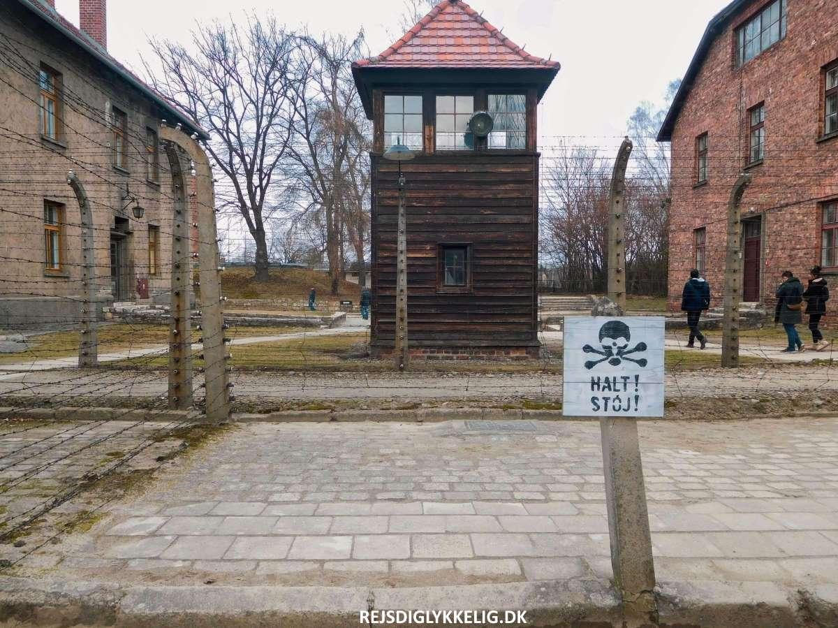 Guide til Auschwitz - Vagttårn - Rejs Dig Lykkelig